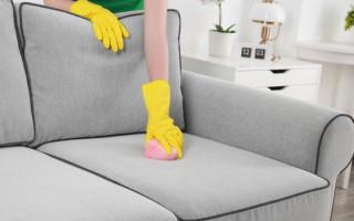 Как в домашних условиях быстро и навсегда избавиться от запаха кошачьей мочи на диване