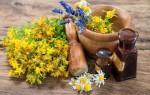 Особенности применения лечебных свойств зверобоя в гинекологии: рецепты для женщин