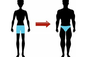 Как набрать вес худому парню: питание и тренировки в домашних условиях