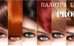 Многообразие палитры красок «Продиджи» от «Лореаль»