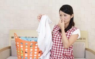 Как можно убрать запах плесени и сырости с одежды и в шкафу