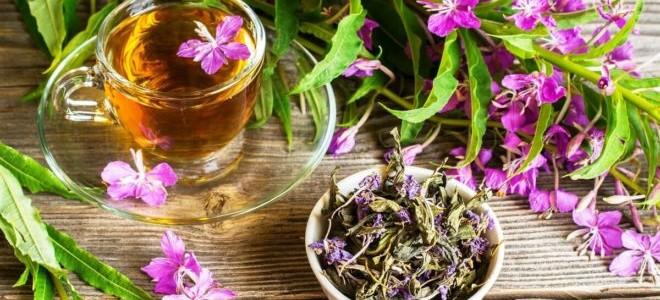 Как готовить копорский чай дома правильно: от ферментации до заварки