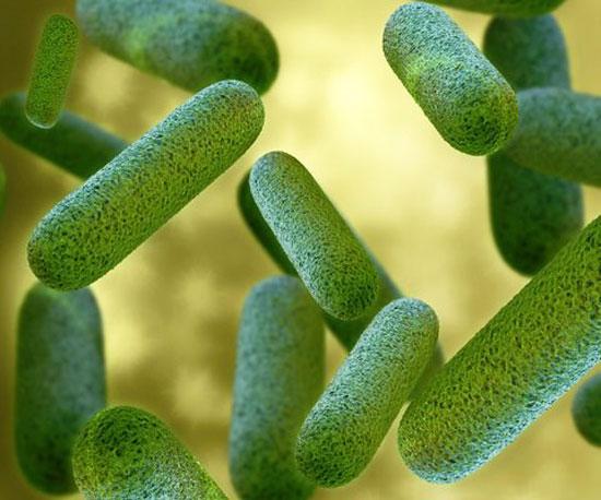 Лечение аллергического дерматита у детей до года