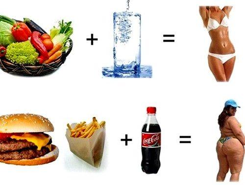 какое питание выбрать