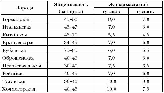 Таблица яйценоскости гусей разных пород