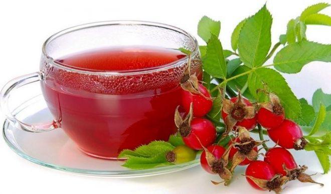 Шиповник: состав растения, польза и возможный вред для здоровья. Примеры действенных рецептов
